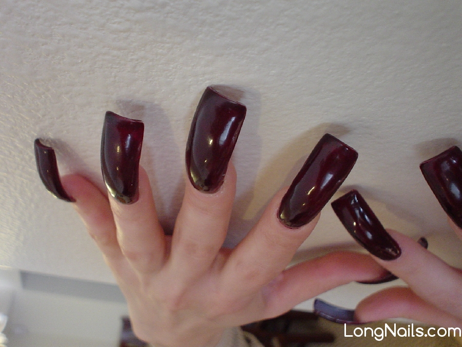 LongNails.com: Long nails pictures and more